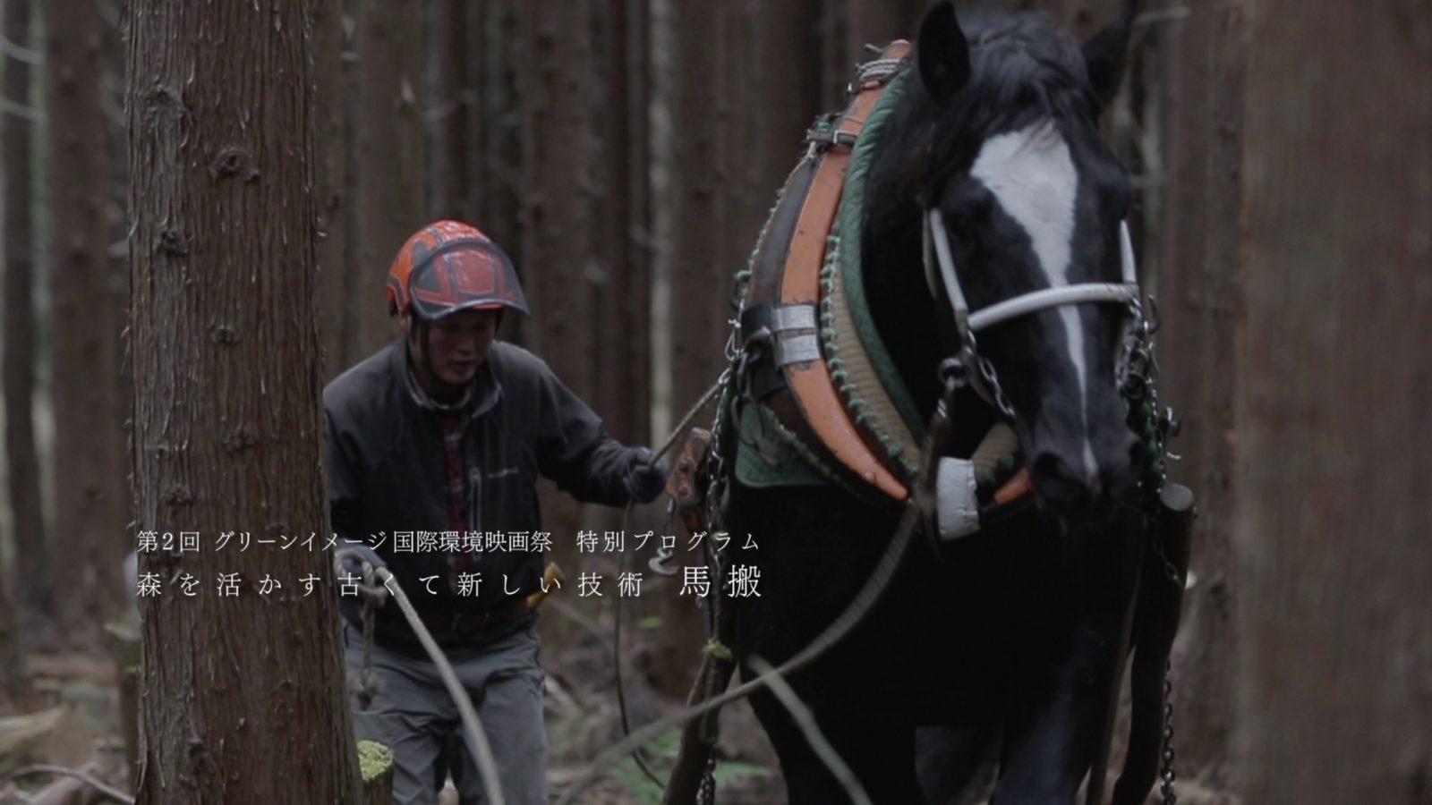 MOVIE:里馬の森から